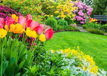 Parcs & Jardins Massart - Réalisations